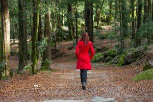Der Weg zu uns - Fünf Schritte - Fachklinik Sankt Lukas